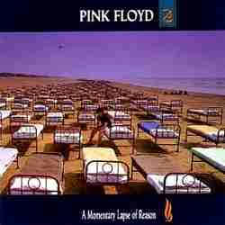 Descargar Pink Floyd A Momentary Lapse Of Reason 1987 MEGA