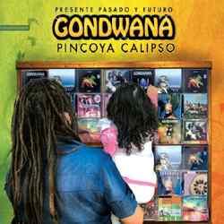 Descargar Gondwana Pincoya Calipso Pasado Presente y Futuro 2011 MEGA