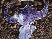 Descargar Jamiroquai Synkronized 1999 MEGA