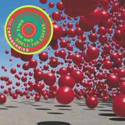 Descargar The Cranberries Wake up and Smell the Coffee 2001 MEGA