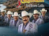 Cardenales De Nuevo Leon Discografia Completa Descargar Mega