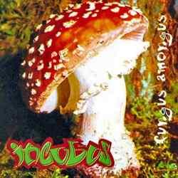 Descargar Incubus Fungus Amongus 1995 MEGA
