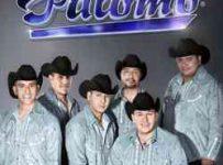 Grupo Palomo Discografia 1 Link